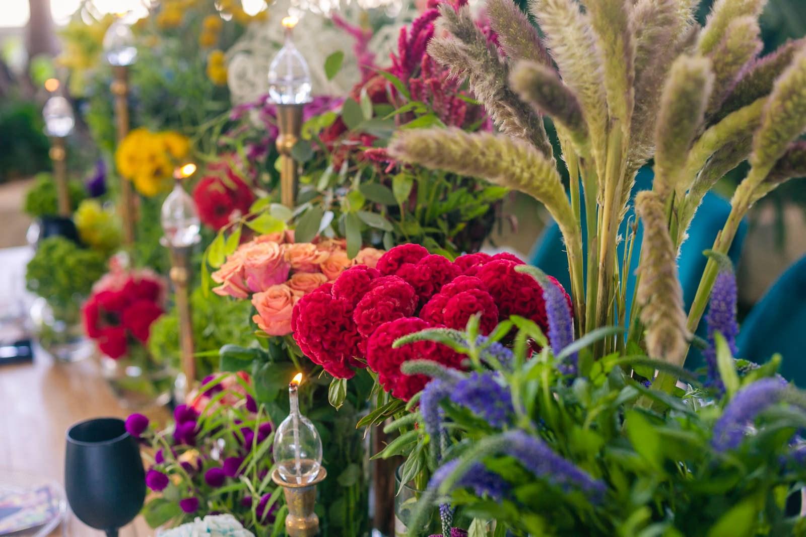 ג'ונגל וייב: הפקת חתונה צבעונית וקיצית, מקום לחגוג, 1