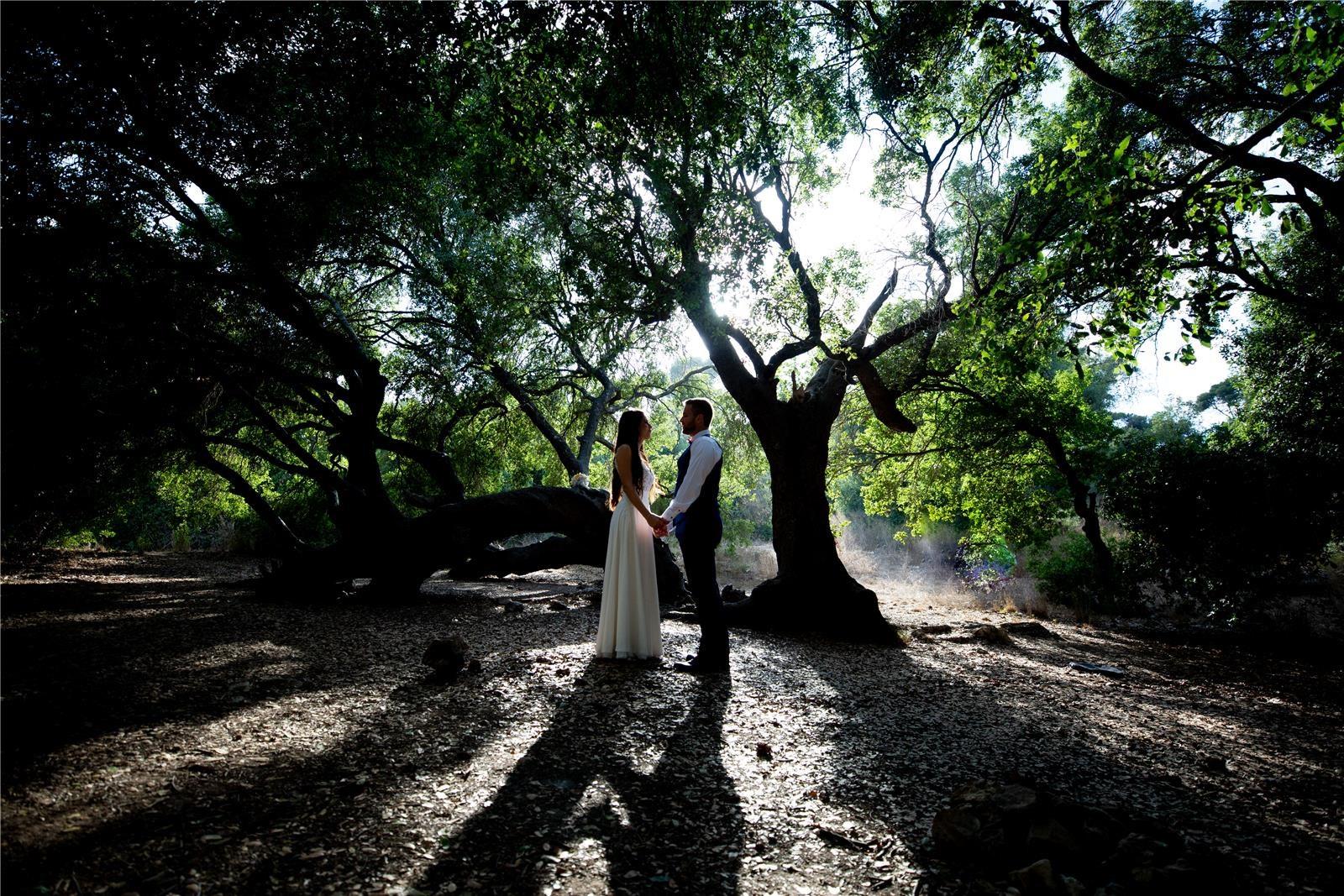 (צילום: Irit&Leon –צילום חתונות)