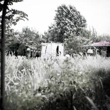 חופה בגן