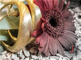 עגילי חישוק זהב צהוב