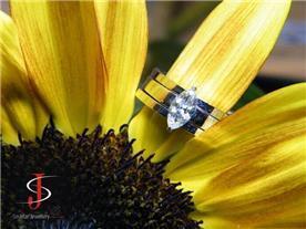 טבעת מרקיזה טריו 3