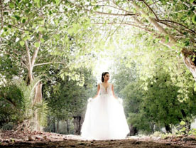 שמלת כלה - אניטה שמלות כלה