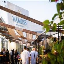 ואמוס - vamoss - 1