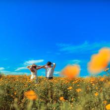 ריקוד בשדה