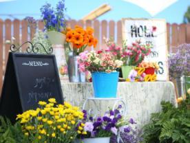 עיצוב אירוע - פרחים באופק