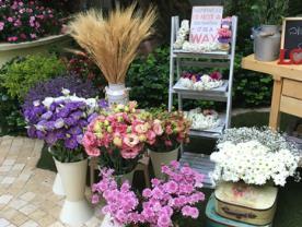 אטרקציה לאירוע - צמרות – עיצוב פרחים לארועים