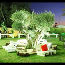 עיצוב מקומות ישיבה בחצר