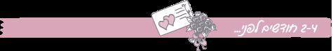 הצ'ק ליסט לחתונה שלכם: לגזור ולשמור, המדריך לתכנון חתונה, 4
