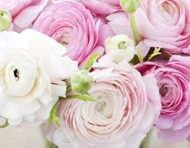 עורכים שולחן חג למחותנים: סידורי פרחים ובחירת שולחן, מסביב לחתונה